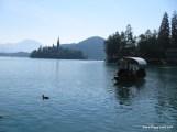 Row Boat to Island - Lake Bled-5.JPG