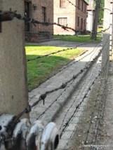 Auschwitz Security Fences-3.JPG