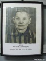 Photographs of Camp Prisoners - Auschwitz-Birkenau-5.JPG