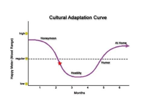[curva[3].jpg]