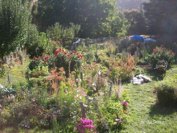 Working in the garden