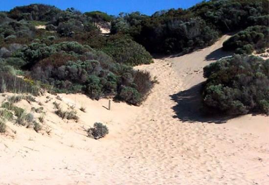 Cape to Cape Track - Climbing a Sand Dune