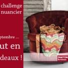 libelul-banner-challenge-nuancier-201109