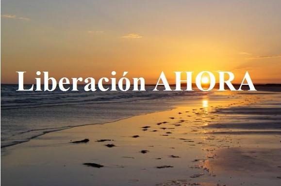 http://i1.wp.com/liberacionahora.files.wordpress.com/2010/08/banner-l-a3-e1281475040893.jpg?w=600