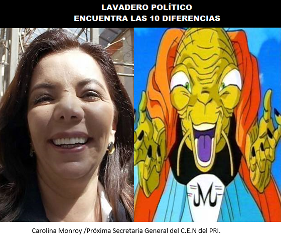 CAROLINA-DIFERENCIAS