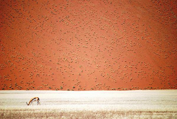fotó: Doris Landertinger, Namíbia