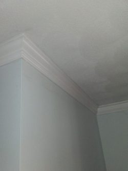 Small Of Foam Crown Molding