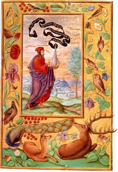 scuola magia alchimia libreria esoterica