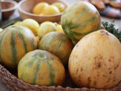 sf-chefs-8909-heirloom-squash