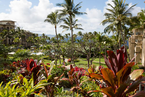 The Ritz-Carlton Kapalua