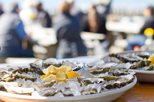 Hog Island Oyster Farm // LickMySpoon