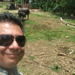 Bogo_PiggyFarm (37)