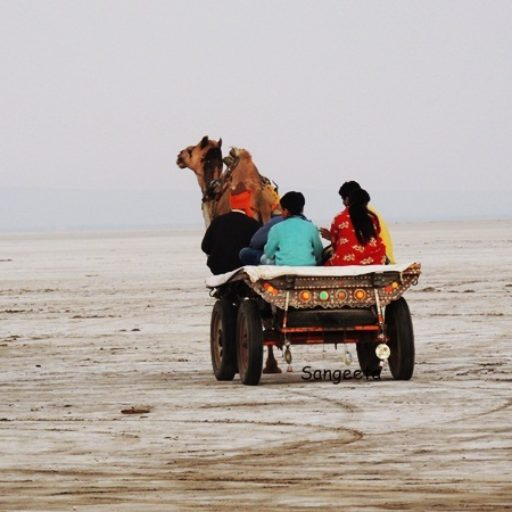 10 Must Do's on a Trip to Kutch, India