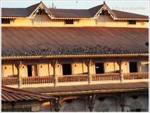 Swaminarayan Kalupur