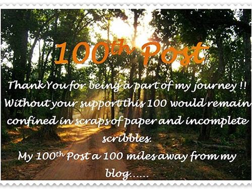 100th Blog Post