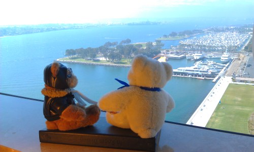 2 stuffed bears, one white, one brown, side by side looking out the window at a marina on the Pacific Ocean