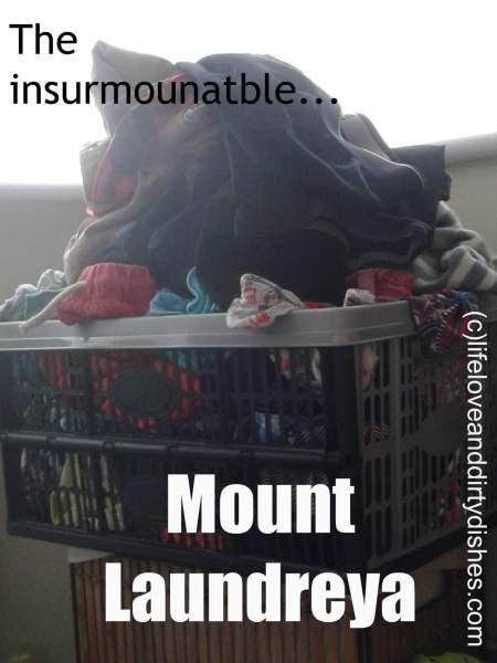 Mount laundry