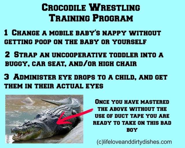 Parenting Meme -Crocodile Wrestling