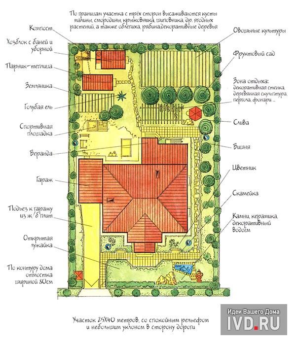 Размещение плодовых деревьев на дачном участке  и их совместимость между собой