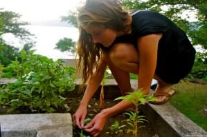 Quinns Secret Garden