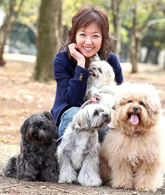 浅田美代子 犬