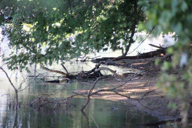 10-sept-16-rivers-edge