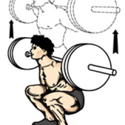 5. Squat