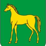 Герб г.Бронницы (Московская область)