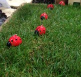 Ladybird Garden candles