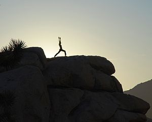 English: Yoga session at sunrise in Joshua Tre...