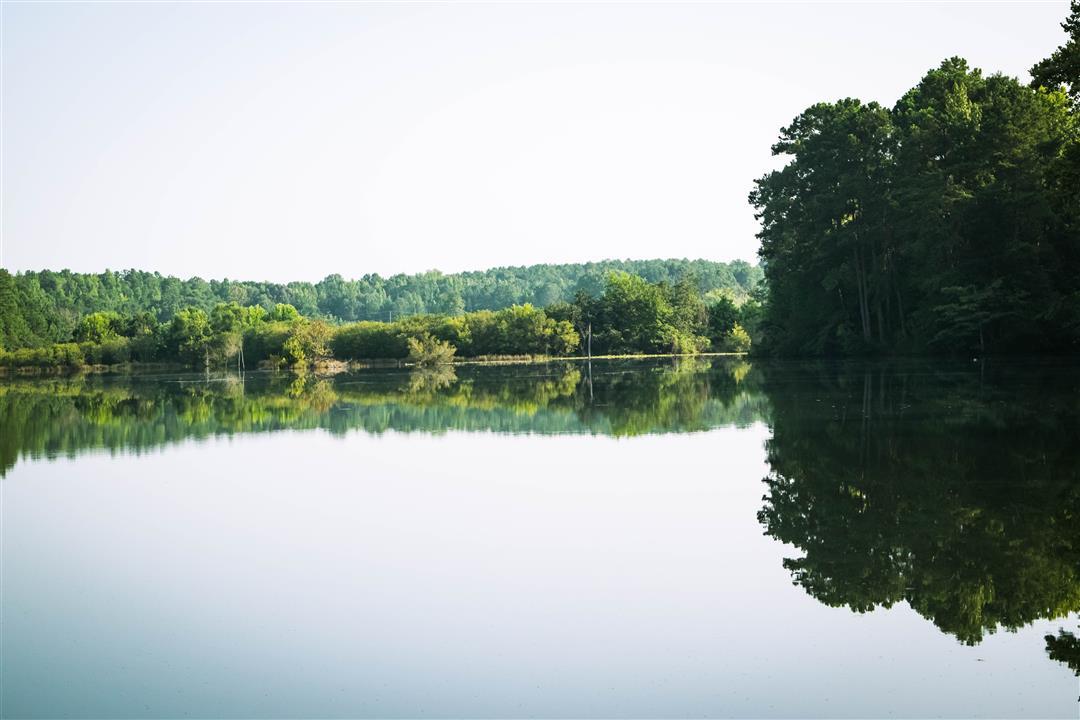 Clear Pond (Custom)