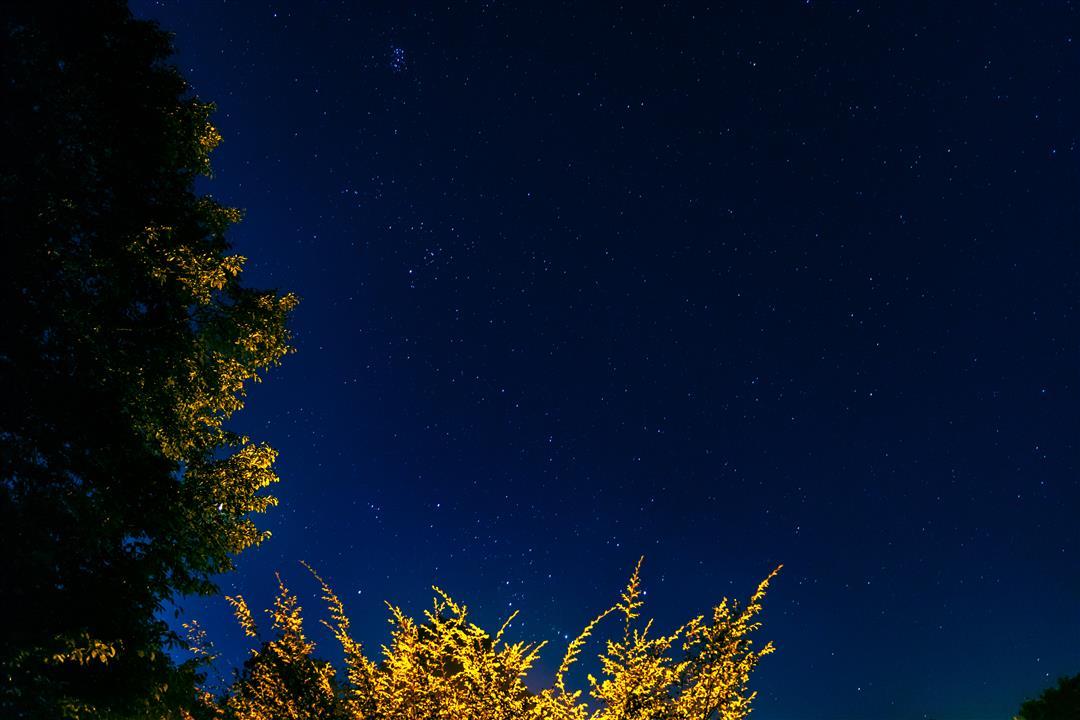 Orion Pleiades (Custom)