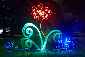 Lightpainting animation dream