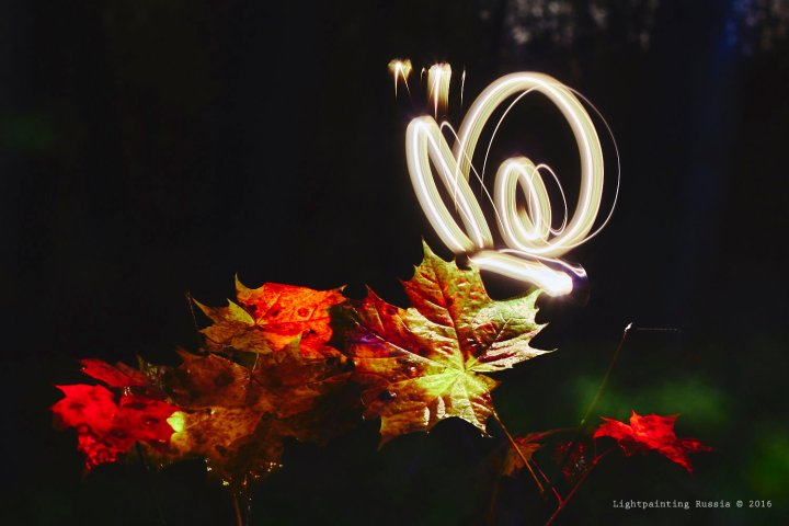 Light painting Autumn - snail