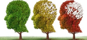 Vitamin D Deficiency May Contribute to Cognitive Decline