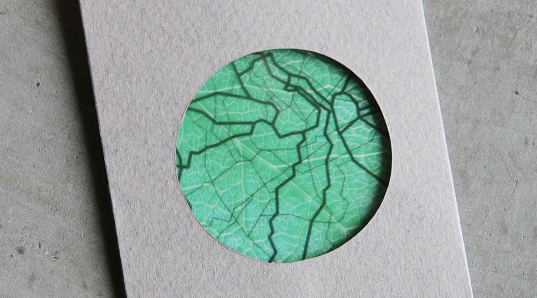 LR Leaves