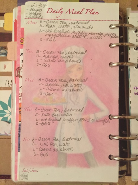 Gillio, planner, planners, inserts, personal size