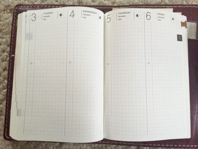 Hobonichi, hobonichi techo, a6 planner, planner, tomoe river paper, kaweco, kaweco sport, kaweco brass, fountain pen