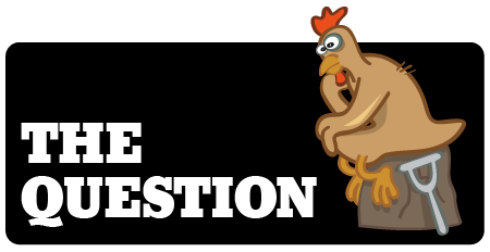 QUESTION-CHICKEN-L