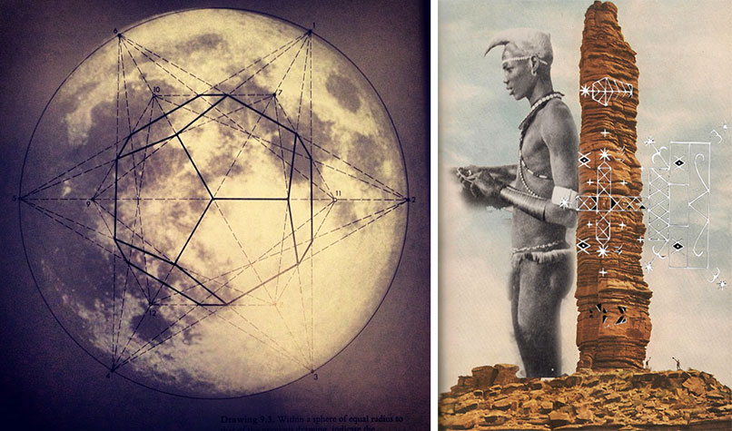 collage_ana_noble_limulus_10