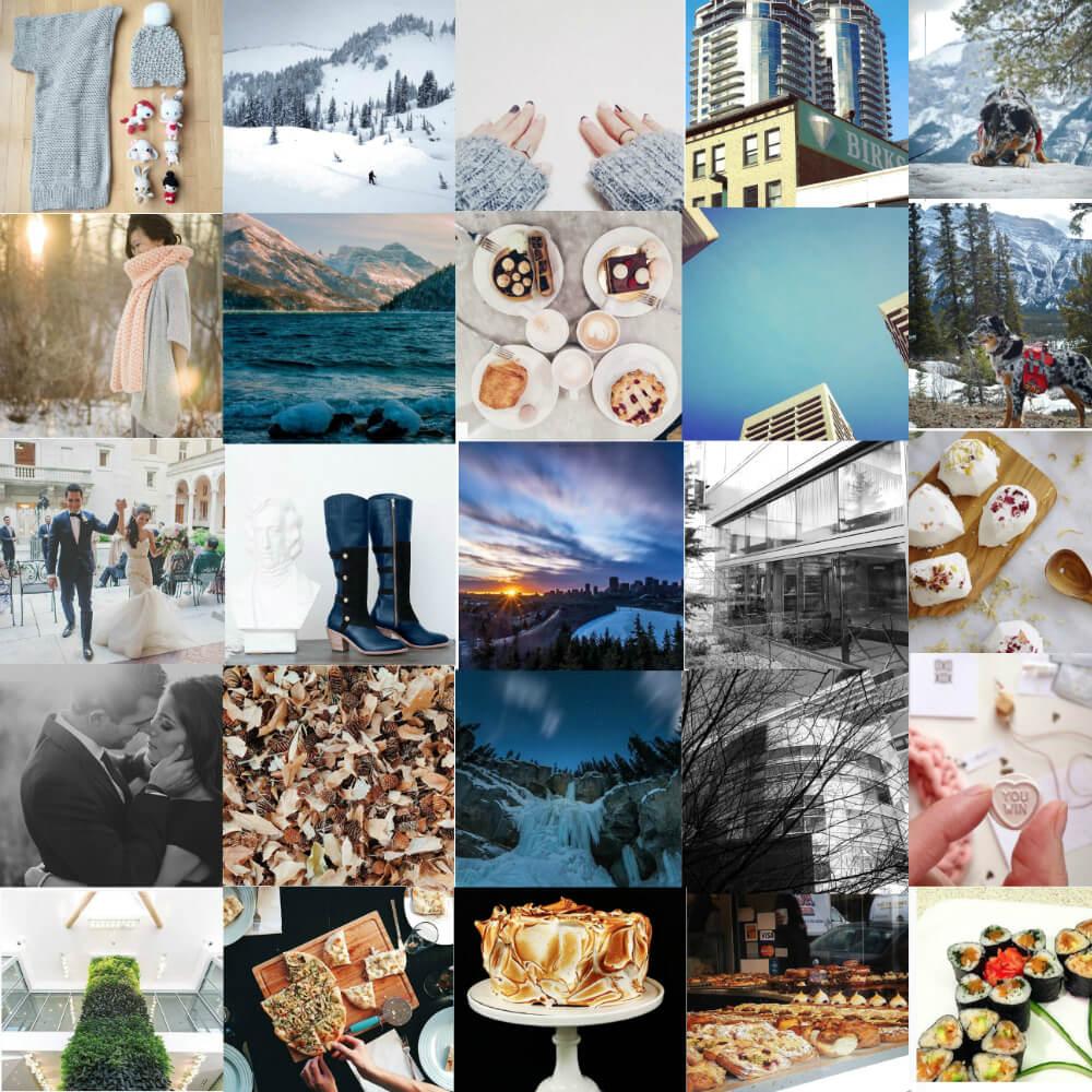 Social Media Spotlight: Top Edmonton Instagram Users to Follow (version 4)