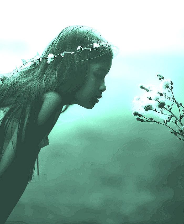 Adventure Maiden