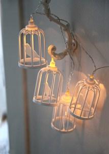 Lyslenke fuglebur miljøbilde 1