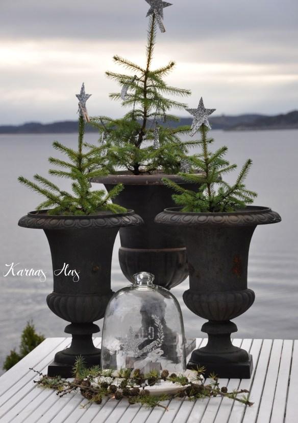 mini juletrær