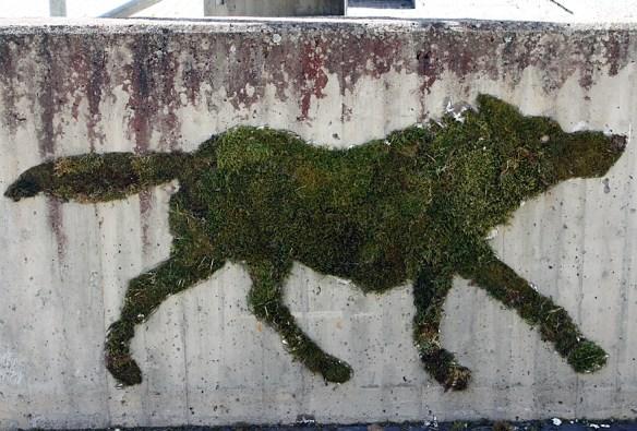 mose grafitti ulv