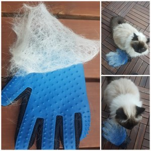Hanske til kattehår kundebilde woweffekt