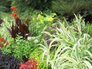 garden border with Arundo donax