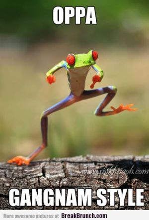 oppa-gangnam-style-funny-frog-picture