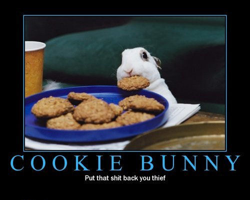 cookie-bunny-thief
