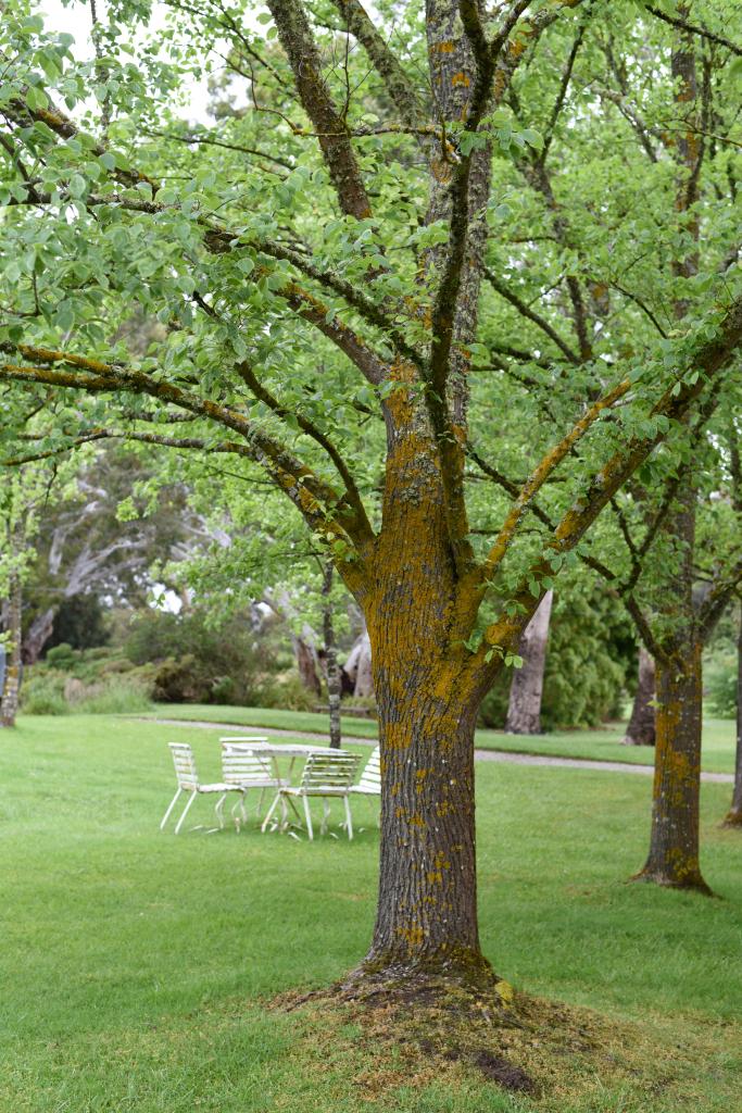 royal mail hotel dunkeld myers garden